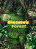 Chocobo'sForest