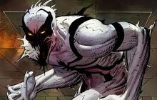 First appearance of Anti-Venom