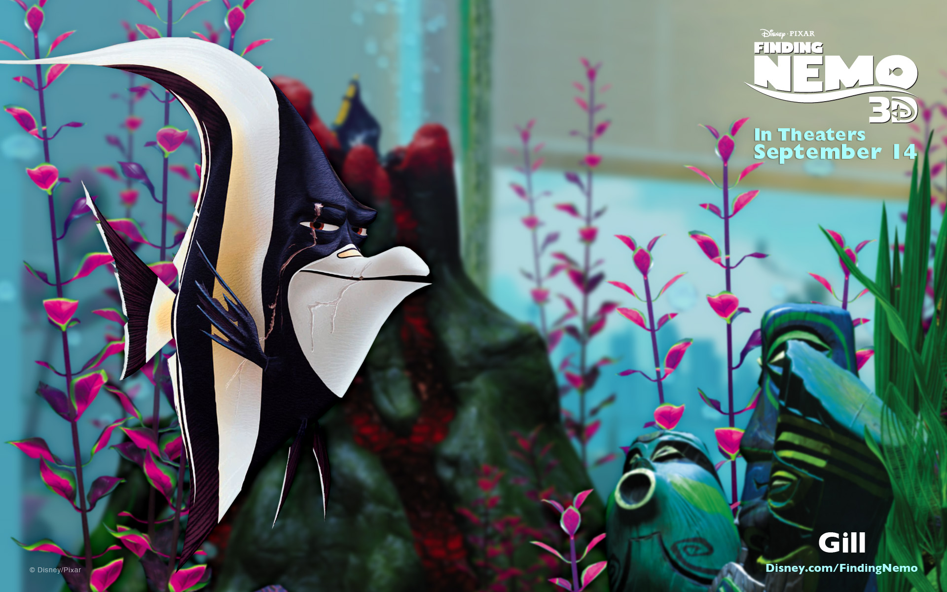Gill-FindingNemo3DGill From Finding Nemo