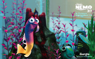 Gurgle-FindingNemo3D