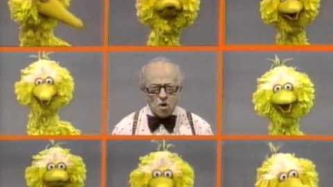 Big Bird's names for Mr. Hooper