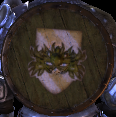 Dalish Shield