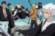 Vizard and Gotei13 protects Ichigo