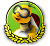 MK3DS Lakitu icon