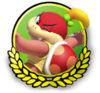 MK3DS Pom icon