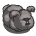 Grey Angora Rabbit 2-icon