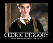 cedric diggory