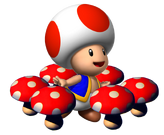 SM64DS Toad