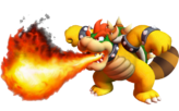 False Bowser