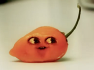 200px-Habanero