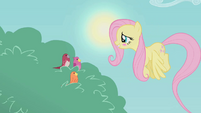 Fluttershy embarrassed S01E07