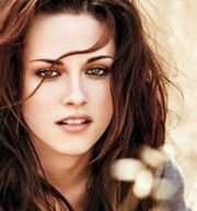 K J Stew