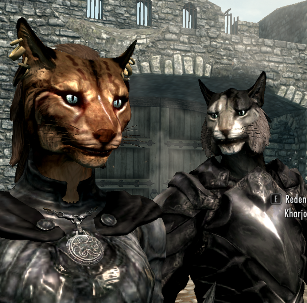 khajiit skyrim the elder - photo #24