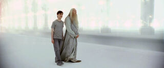 Harry and Albus limbo