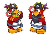 Rockhopper-Innocent