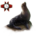 Item guadalupefurseal 01