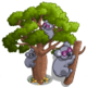 Australian Boab Tree-icon