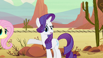 "Rarity ""Yes, why here?"" S2E14"