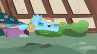 Rainbow Dash flying away S1E25