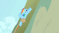 Rainbow Dash flying away 3 S1E25