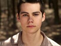 Stiles In The Woods