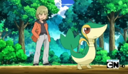 Trip&#39;s snivy