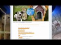 WPVI-TV's Shelter Me Video Promo From July 2012