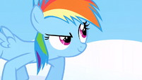 Filly Rainbow ready to race S1E23