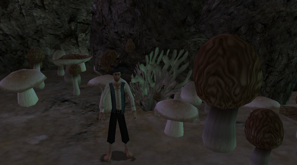 MushroomGarden