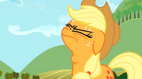 Applejack worried swallow S02E15