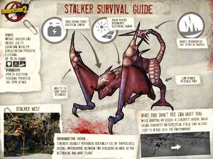 Stalker profile