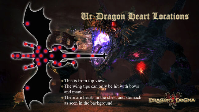 Ur-Dragon Heart Locations