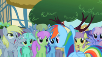 Derpy Rainbow Dash 3 S2E08