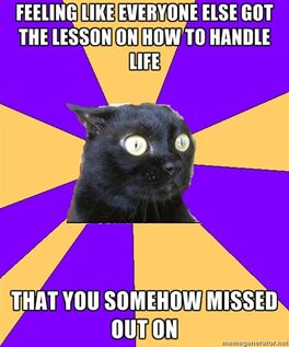 Cat-Missed Lesson On Handling Life