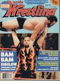 Inside Wrestling - March 1988.jpg