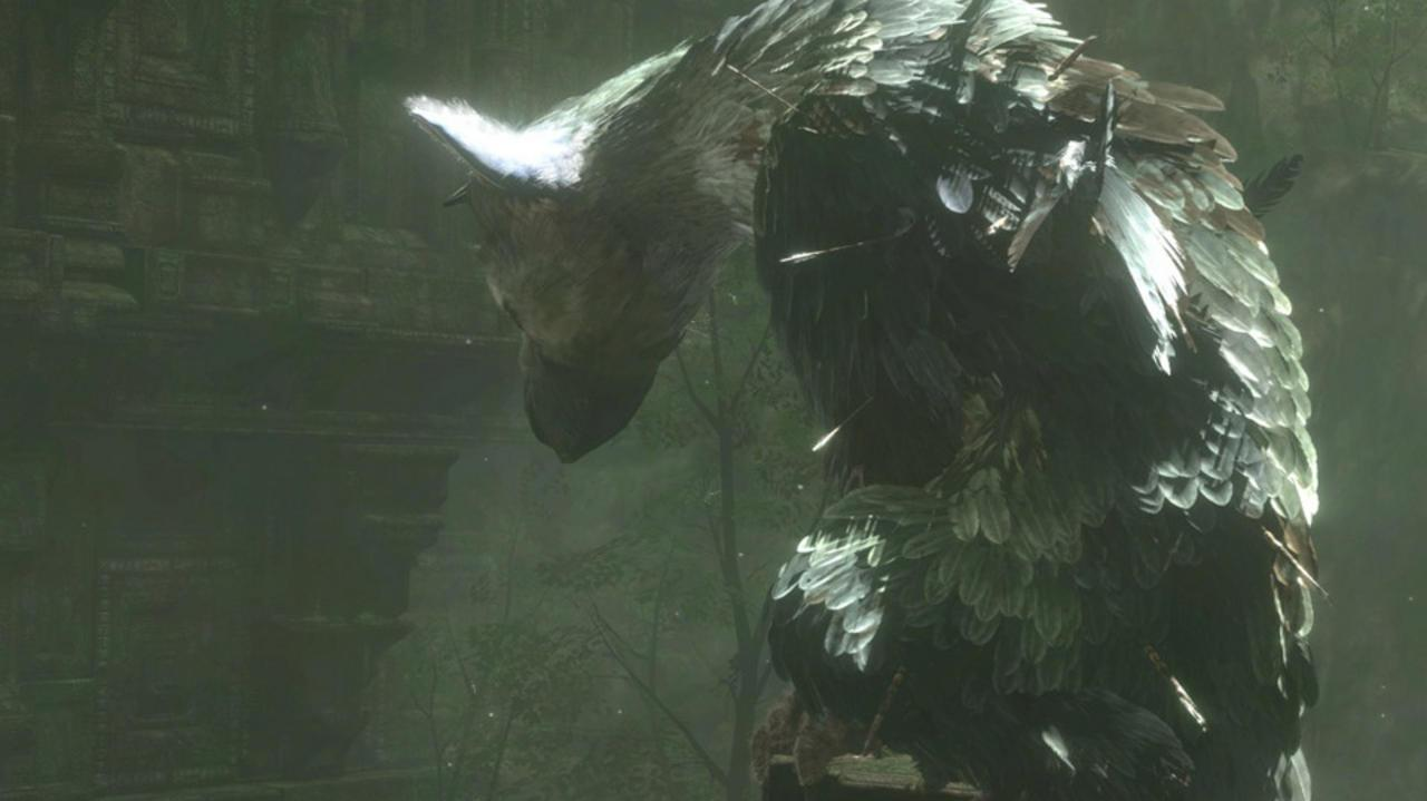 TGS Last Guardian and Shadow of the Colossus Video Impressions