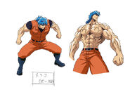 Toriko design3