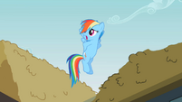 Rainbow Dash &#39;And I guess&#39; S2E08