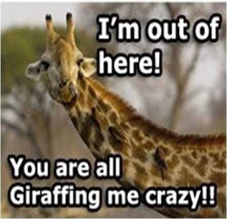 Image joke giraffe jpg dragonvale wiki