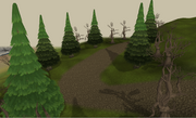 Prifddinas northen woodland