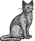Ashfur (TC).warrior