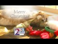WLBZ-TV's Merry Christmas Video ID From December 2009