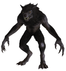 Werewolf from Skyrim