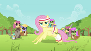 Fluttershy Pushup S02E22