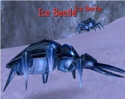 Ice Beetle