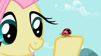 Fluttershy with ladybug S2E07