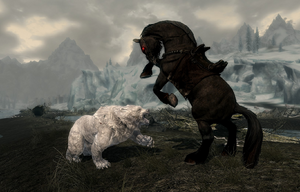 Shadowmere IceBear