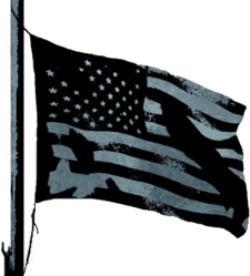 BFBC2 Conquest Flag