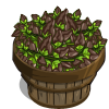 Choco Mint Bushel-icon