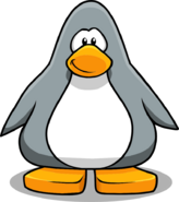 Grey Penguin2223